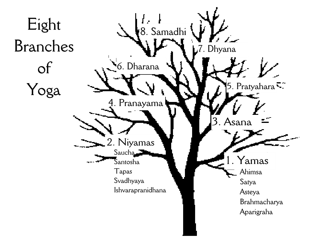 branches yoga